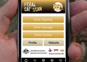 L'applicazione sviluppata dal Ministero degli Interni che consentirà alle persone di allertare le autorità sulle aree in cui è stato avvistato un gran numero di gatti