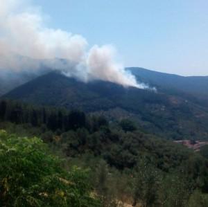 Calci (Pisa), incendio su Monte Serra. Abitazioni in pericolo
