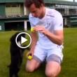 Andy Murray gioca e bacia i cuccioli di cocker