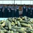 Cetriolo mania in Russia: ricette per tutti i gusti al Cucumber Day