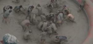 Festival del fango in Corea del Sud: il divertimento è assicurato