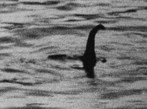 """Mostro di Loch Ness esiste? """"No, è un pesce gatto gigante"""": la teoria di Steve Fetlham"""