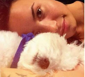 Demi Lovato affranta su Twitter: è morto il suo cagnolino Buddy
