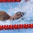 Nuoto, Mondiali: Gregorio Paltrinieri oro12