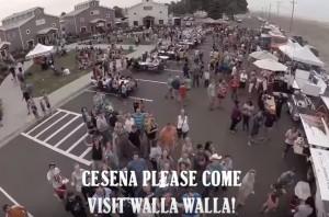 VIDEO YouTube - Cesena va dai Foo Fighters aspettando...