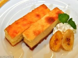 Cheesecake fatta con cacca di gorilla: nuovo dessert al bar dell'Università di Kyoto