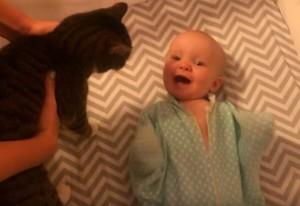 VIDEO YouTube - Gatto nel letto, neonato impazzisce di gioia