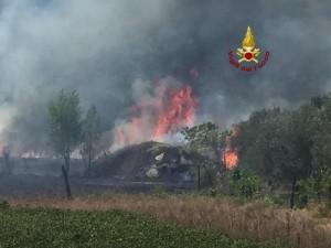 A12, incendio a Santo Stefano Magra (La Spezia). Casello autostrada chiuso