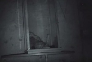 VIDEO YouTube - Marionetta si muove da sola o c'è il trucco?
