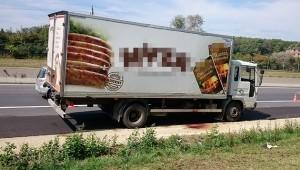 Austria, altro camion con migranti: anche 3 bimbi gravi