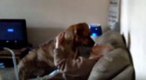 VIDEO YouTube: nonna fa sorpresa ad alano. Ecco sua reazione