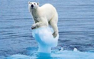 I ghiacci si sciolgono