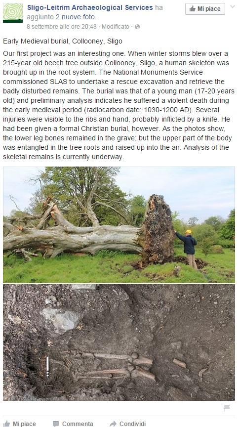 Le foto dello scheletro e dell'albero pubblicato su Facebook