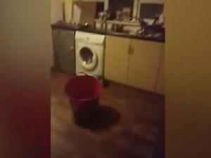 Video Youtube Fantasma In Cucina Secchio Si Muove