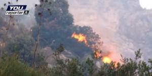 VIDEO Piano di Sorrento, incendio Monte Vico Alvano