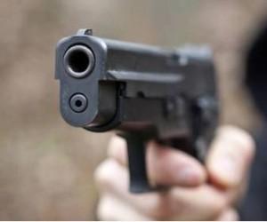 Armi per legittima difesa: proposta di Sergio Berlato, FdI