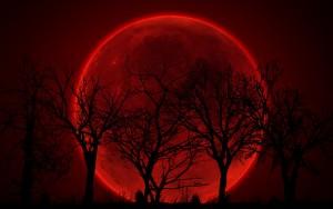 Eclissi e Luna di sangue 27 settembre. Non succede dal 1982