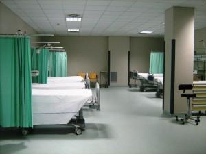 Serpenti e scarafaggi in sala operatoria all'ospedale Ruggi