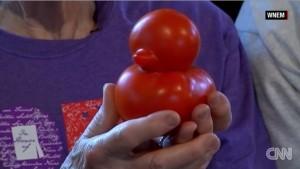 Video YouTube: il pomodoro a forma di anatra