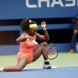 Serena Williams sul Calendario Pirelli 201608