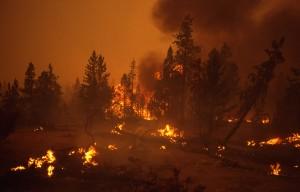 VIDEO YouTube. Fuga in auto tra le fiamme nel Valley Fire