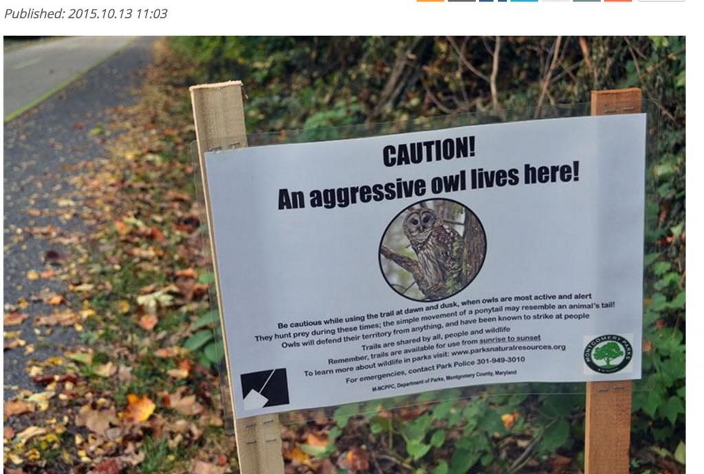 """""""Attenzione, gufo pericoloso"""": cartello al parco Usa FOTO"""