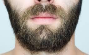 Trapianto barba, costa fino a 20mila euro uno completo