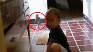"VIDEO YOUTUBE ""Ho fotografato un goblin in casa mia"""