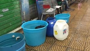 Benevento, Messina città colera. Prossima acqua a chi tocca?