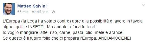 """Salvini: """"Insetti a tavola? L'Ue vada a farsi fottere"""""""
