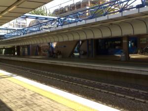 Roma-Lido, donna cade sui binari e viene travolta dal treno