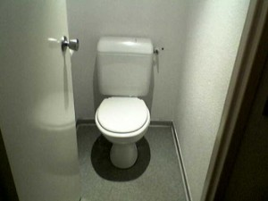 Pipì in doccia, guardare i bisogni: strane abitudini al wc