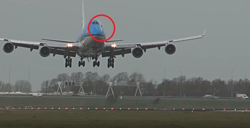 YOUTUBE Uccello contro aereo in volo: ecco cosa succede