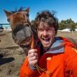 Alex, il professionista dei selfie con animali7