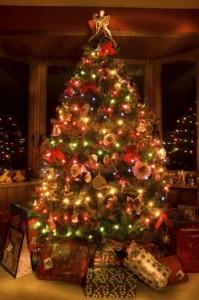 Torino, rubano albero di Natale per i figli. I carabinieri..