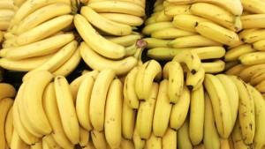 Fungo minaccia banane: potrebbe portarle all'estinzione