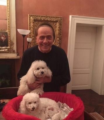 """Dudù ha fatto cuccioli, Berlusconi e Pascale """"molto felici""""3"""