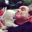 """Dudù ha fatto cuccioli, Berlusconi e Pascale """"molto felici""""4"""