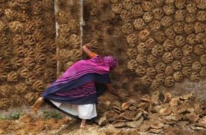 Cacca di mucca per riscaldare online va a ruba in India