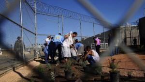 Usa: falla in software, 3.000 detenuti rilasciati per errore