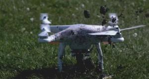 YOUTUBE Pale drone tagliano di tutto, anche frutta e verdura