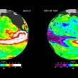 El Nino pericoloso come nel 1998: il clima cambierà così