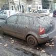 Roma, lungotevere chiuso per... guano! Caos in strada