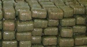 Sequestrati su tir 250 kg di hashish nascosti tra la paglia