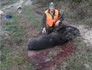 Va a caccia cinghiali con amici, colpito per sbaglio: morto