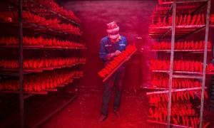 YOUTUBE Fabbrica Natale in Cina: Yiwu inquinato...per noi