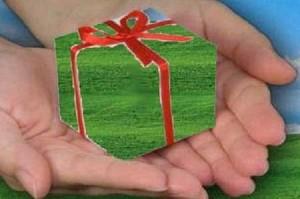Natale: 5 idee regalo eco-friendly