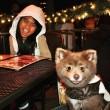 Cane o orso La FOTO misteriosa pubblica sul web 4
