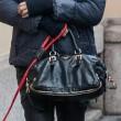 Elisabetta Canalis, suo cane non si trattiene13