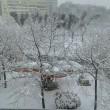 Maltempo neve a Pescara, Molise, Marche e Puglia5